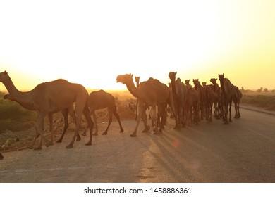 Pakistan Sunset Images, Stock Photos & Vectors | Shutterstock