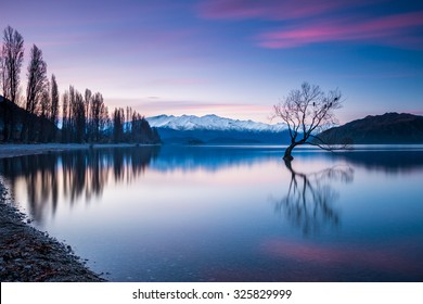That Wanaka Tree at Sunset - The Most Photographed Tree in New Zealand | Wanaka, NEW ZEALAND