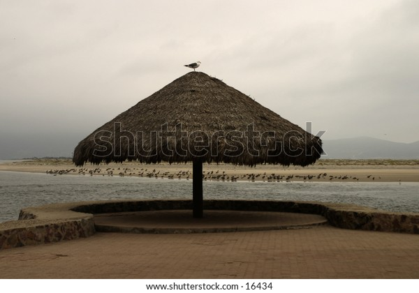 A thatch umbrella along the Mexico Coastline