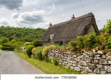 Thatched cottage in the north york moors national park with a dry stone wall