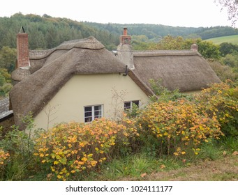 Thatched Cottage Images Stock Photos Amp Vectors Shutterstock