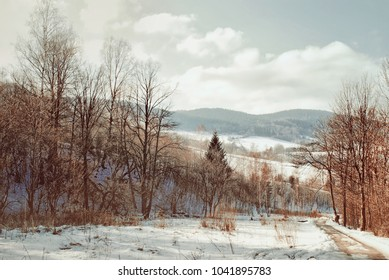 Thaw in the mountains. Snow slowly melts and shows ruthless trees branches. Winter scenery with visible path and peaks in the background. Cloudy sky and serene mood. Cold weather for hiking and relax.