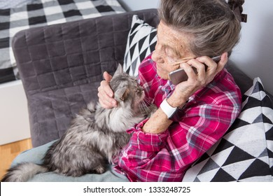 Theme old person uses technology. Mature contented joy smile active gray hair Caucasian wrinkles woman sitting home living room on sofa with fluffy cat using mobile phone, calling and talking phone.