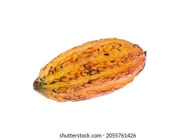 Theobroma Cacao - Organic Cocoa Fruit Of The Cocoa Tree; Photo On White Background