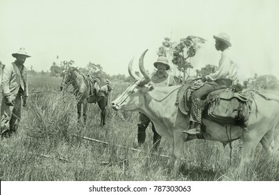 Theodore Roosevelt and others of the Roosevelt-Rondon Expedition, Jan.-Feb. 1913. They are traveling from Caceres on the Paraguay River across the Parecis Plateau to the headwaters of the River of Dou