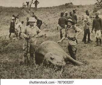 Theodore Roosevelt and unidentified man standing over a killed hippopotamus. In the background are African workers who will skin the animal. July-Dec. 1909 during the Smithsonian_Roosevelt African Exp