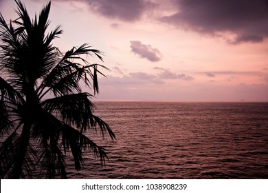 There is beautiful gold sunset on the Indian ocean. Beach view. Nature of Sri Lanka. Beach.