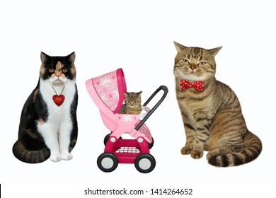 There is a cat family. The pink stroller with a kitten is between the father and the mother. White background. Isolated.