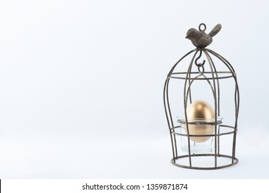 There is a golden egg in the cage. It is neatly harmonized with the white background.