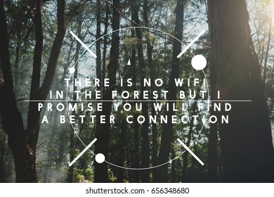 There is no wifi in the forest but new connection.