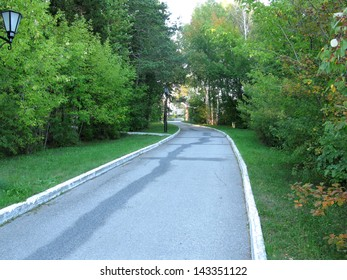 There are park, green trees and road
