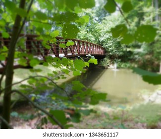 There's ALWAYS something about a bridge to make for a perfect photo subject, as was this one taken at a small pond at Cooper's Rock State Park in West Virginia.
