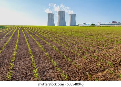 Thermal power plant, corn field