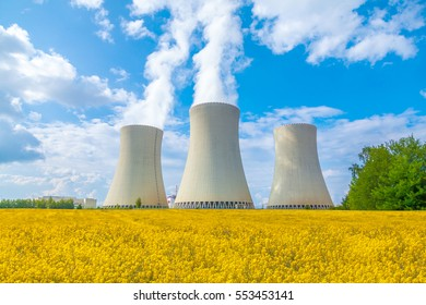 Thermal power plant with rape field