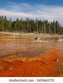 Thermal sediments at Yellowstone national park, USA