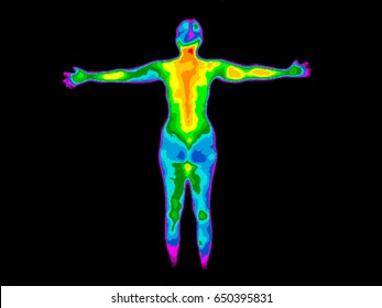 Thermographic image of the back of a whole woman body with the photo showing different temperatures in range of colors from blue showing cold to red showing hot which can indicate joint inflammation.