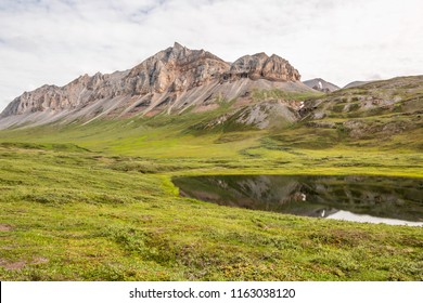 A thermokarst sits in the muskeg below Fortress Mountains in the Arctic National Wildlife Refuge just off the Dalton Highway. Alaska.