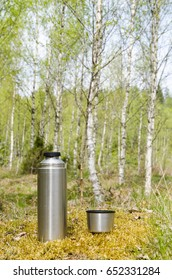 Thermos with beverages in a bright deciduous forest by spring season