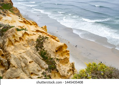 These sandstone cliffs erode in fascinating shapes at Torrey Pines State Reserve