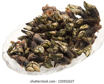 they are goose barnacles, handgathered from rocky outcroppings off the Galician or Cant���¡brico, Vizca���a coast; they taste like the essence of the sea
