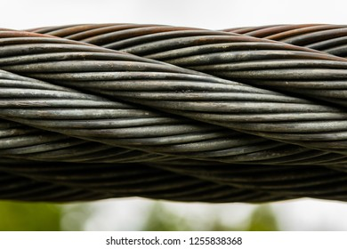 Thick Braided Wire Cable On Suspension Bridge