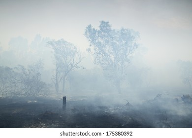 A thick cloud of smoke from a fire blowing over