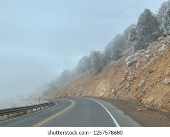 Thick fog while driving through the mountains.