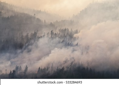 Thick smoke forest fire Canada