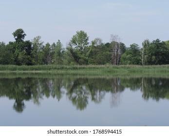 Thicket reflektiert in den Gewässern des künstlichen Brutteichs in der europäischen Goczalkowice Stadt im schlesischen Bezirk in Polen, klaren blauen Himmel im Jahr 2020 warm sonnigen Frühlingstag im Juni.