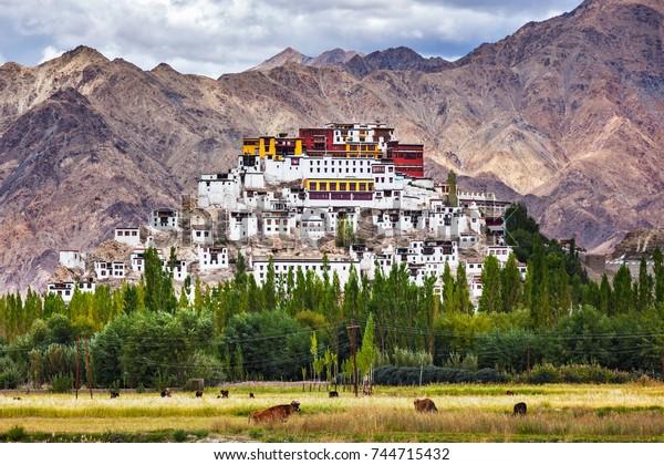 Thikse Gompa ou le monastère de Thikse (également translittéré de Ladakhi sous les noms de Tikse, Tiksey ou Thiksey) - monastère bouddhiste tibétain de la secte du Chapeau jaune (Gelugpa). Ladakh, Jammu-et-Cachemire, Inde