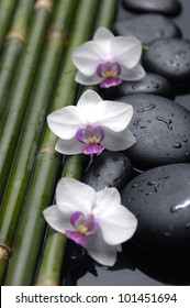 Thin bamboo and orchid flowers on wet pebble stones