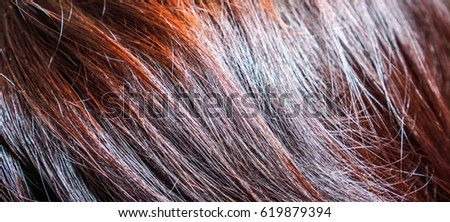Thin Dark Brown Burgundy Red Hair Stock Photo Edit Now 619879394