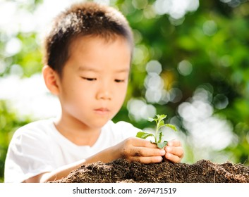 Thin focus on hand of Child holding young plant on green background to plant on soil. Concept Earth day.