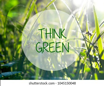 Think green ecology friendly concept on natural green grass background. Selective focus.