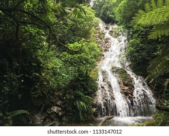 Third level waterfall in the primeval forest on a hiking trail crossing the Bwindi Impenetrable Forest in Uganda