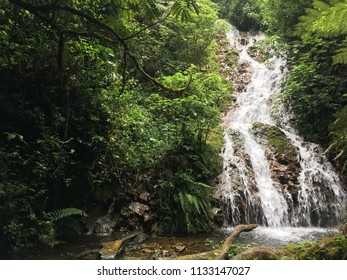 Cascade de troisième niveau dans la forêt primitive sur un sentier de randonnée traversant la forêt impénétrable de Bwindi en Ouganda