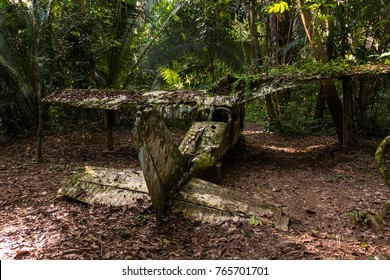This airplane crashed in the 80s in the Jungle that is now the Cockscomb Wildlife Sanctuary in Belize. It belonged to Alan Rabinowitz. This man is single-handedly responsible for the creation of the f
