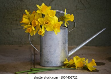 This is a beautiful still life of a watering pail and daffodils.  It's soft focus and muted colors make it look much more like an aged oil painting than a photograph.