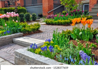 This beautiful urban front yard garden features a large veranda, brick paver walkway, retaining wall with plantings of bulbs, shrubs and perennials for colour, texture and winter interest.