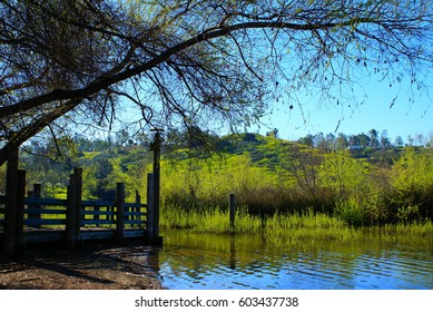 This is from Bonelli Park in California.