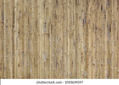 This is close up of bamboo texture background.