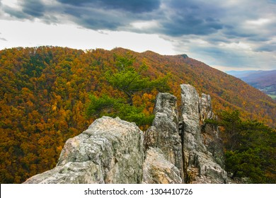 This is a close up view of the top of Seneca Rock, located in the Monongahela National Recreational Area in West Virginia.  A mountainside of Autumn colors is in  the background.