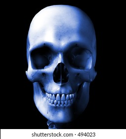 This is an computer generated image of a skull.