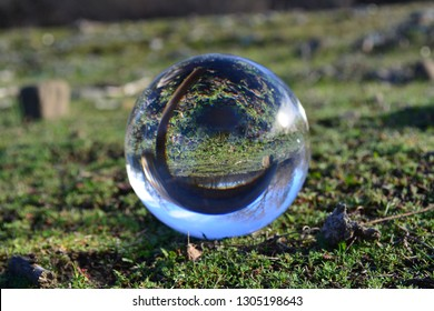 This is a crystal ball refraction photo that captured a group of little mushrooms. It was taken on our ranch in the western part of Northern California.