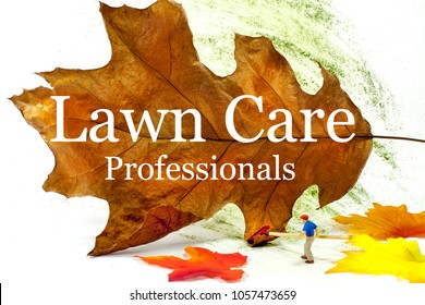 This eye catching image of a man raking leaves could be used for residential or commercial lawn care. Large type announces you are a Lawn Care Professional. Room for your name and phone number.