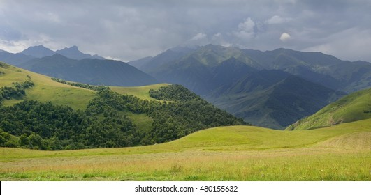 This is green meadow in Caucasus mountains in summer