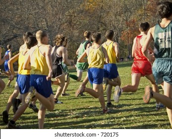 This is a group of runners at the beginning of a cross country race.