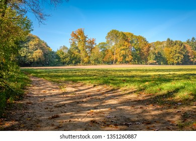This hiking path through green fields and dense forests located at the Tankenberg (near the city of Oldenzaal) on a sunny october day is a typical Dutch landscape