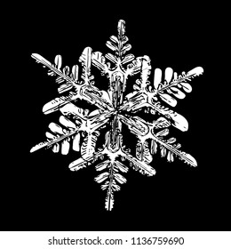 This illustration based on macro photo of real snowflake: big stellar dendrite snow crystal with fine hexagonal symmetry, complex ornate shape and six long, elegant arms with side branches.