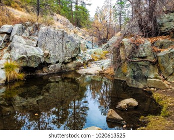 This image was captured in the Prescott National Forest, approximately 1 mile from Goldwater Lake, south of Prescott, Arizona.